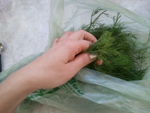 A Pinch of dill