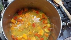 Simmer down now - Carrot and Butternut Squash Soup